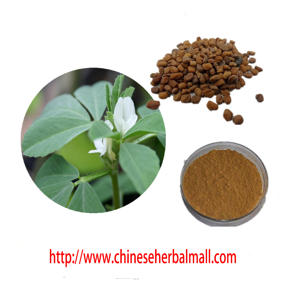 Hot sale 100% natural Common Fenugreek Seed Extract Powder 4-Hydroxyisoleucine 20% for Men's health, free shipping
